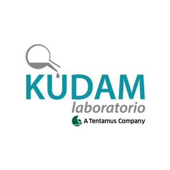kudam_weblogo_GroupTag