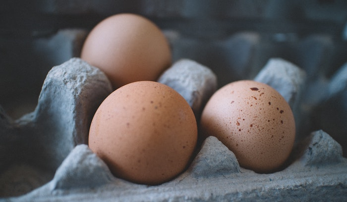 Dioxine in Eiern