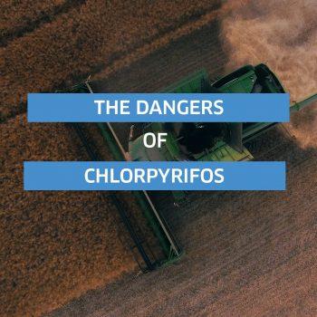 Chlorpyrifos Dangers